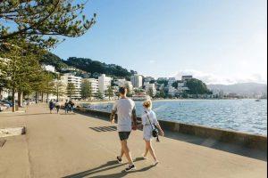 探索惠灵顿 | 新西兰收入最高的地区就在这儿