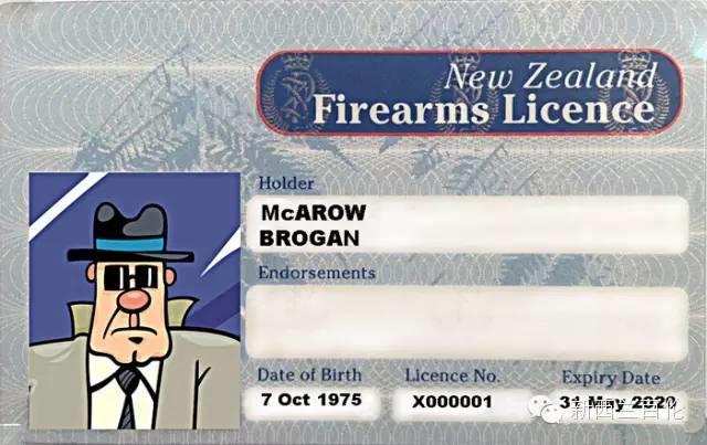 如何正确地在新西兰持枪:申请枪牌