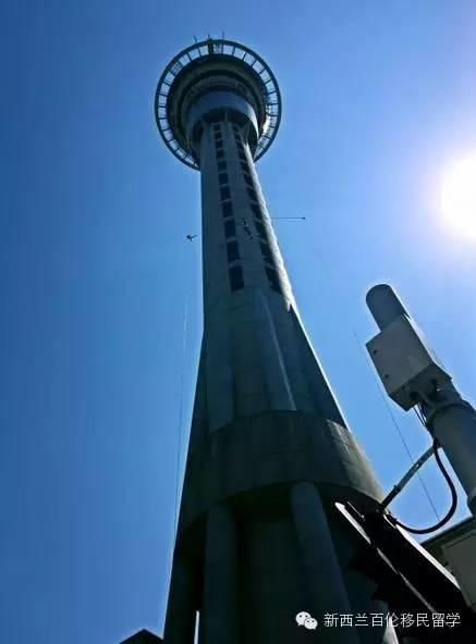 【奥克兰一日游 · 吃喝玩乐】360°玩转奥克兰地标——天空塔