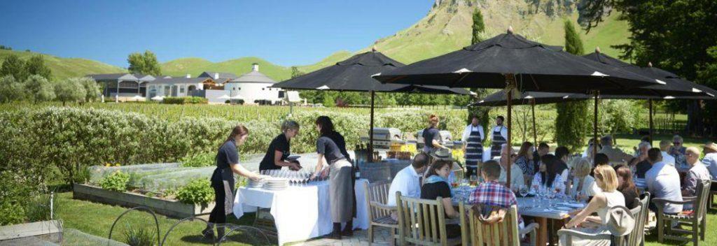探秘新西兰霍克斯湾地区 | 开启度假式的轻奢留学之旅