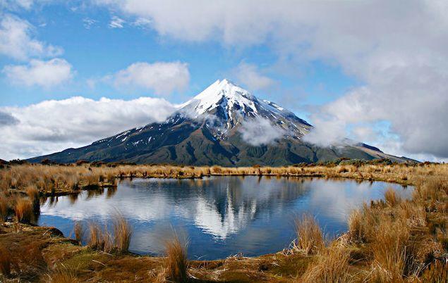 """新西兰首创!这所""""绿色学校""""如此优秀"""