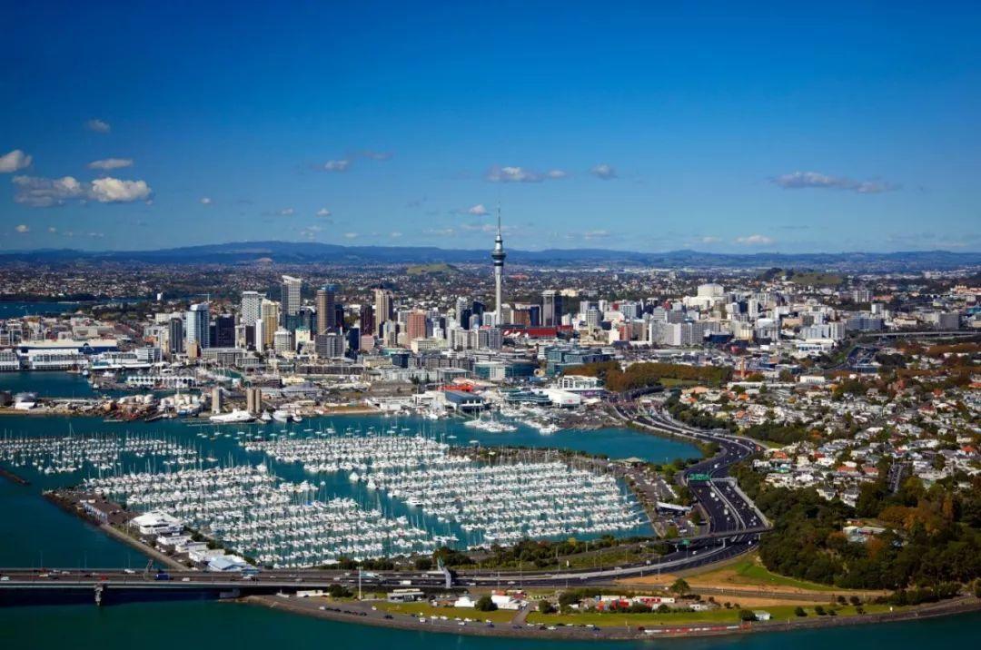 中医能在新西兰学吗?学了能移民吗?