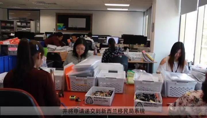 【脱水精华版】新西兰移民局内部审理流程揭秘!